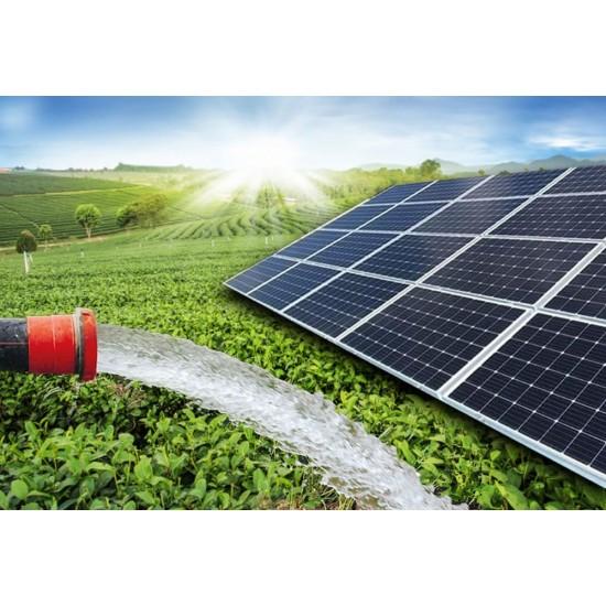 1 HP Dalgıç Pompa Tarımsal Sulama Sistemi